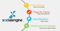 Get Social Engine Maintenance Services at best prices