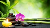Feel Refreshed by getting Female to Male Body spa in Andheri Mumbai